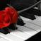 11. Chopin: Nocturne No. 1 in B flat minor (Samson François)