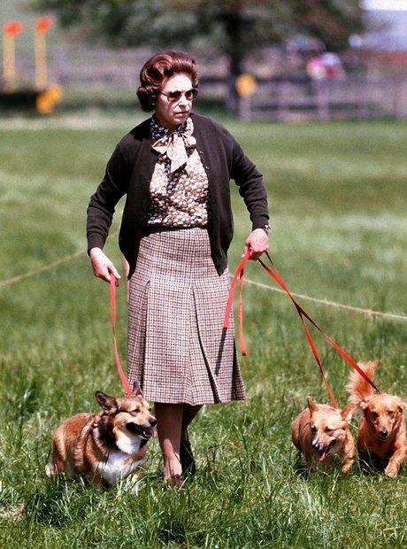 Walking Her Dogs