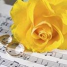 Wedding Music Rose