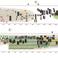 Image 6: Graphic scores